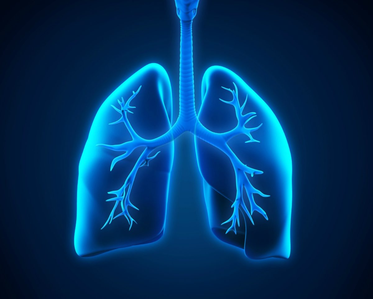 LARGE-bigstock-Lung-and-Bronchi-65038987-1200x960.jpg